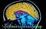 Schmerzforschung: Link für Freunde bei facebook.de